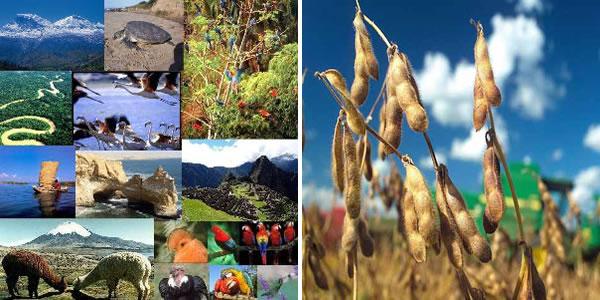 unasur-recursos-naturales