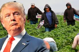 eeuu trump migrantes