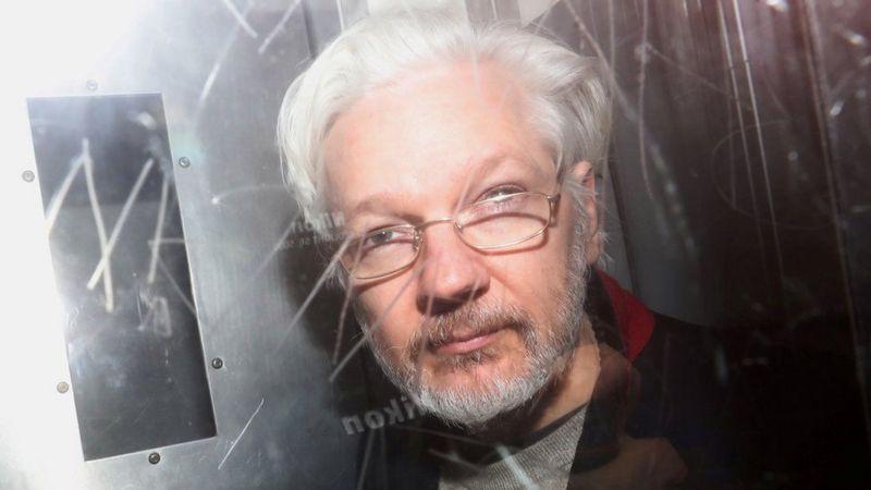wiki assange19